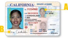 California driver license - front