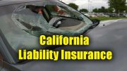 California Liability Insurance - Copyright: Xzelenz Media